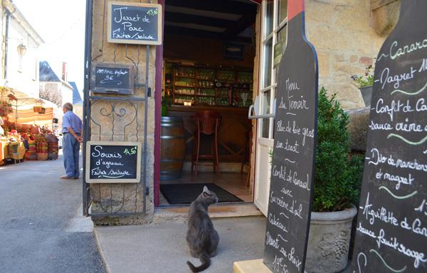 Montignac cat
