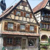 7 Alsace - Dambach-la-Ville square 2