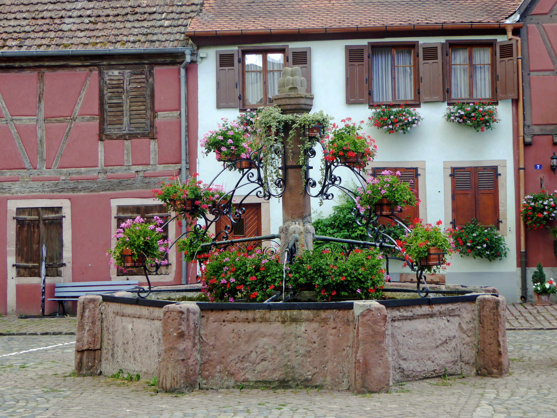 Alsace-18