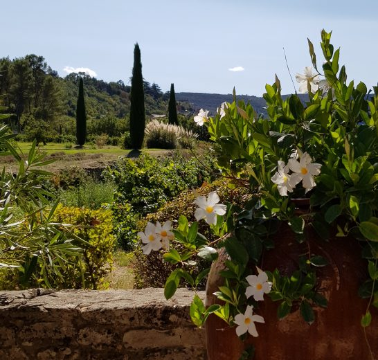 Luberon Experience week in Provence