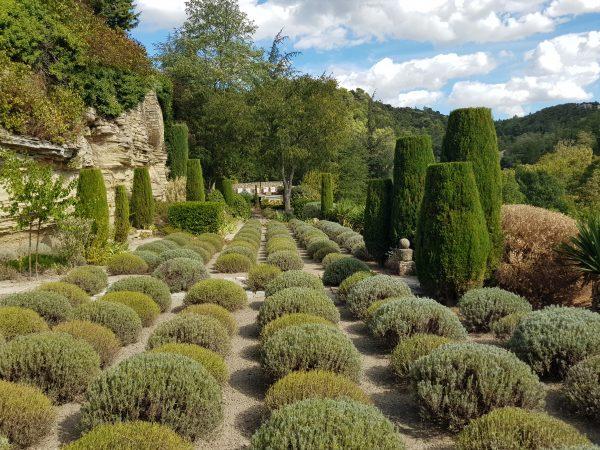 La Louve garden - Luberon Experience week in Provence