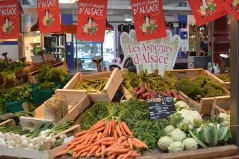 Asparagus of Alsace, Alsace Experience