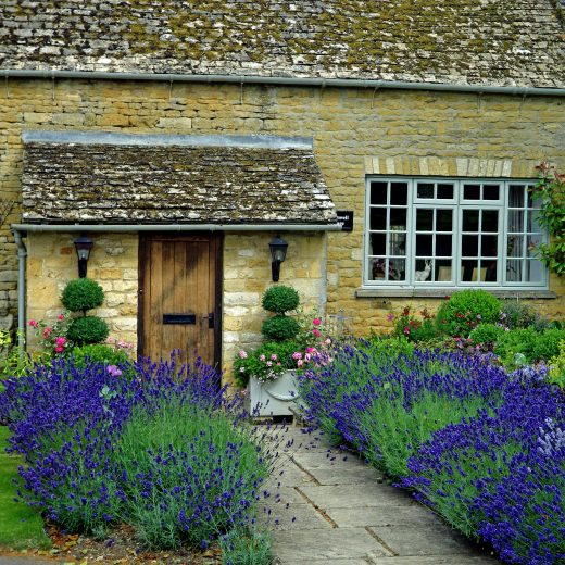 Return to the Cotswolds