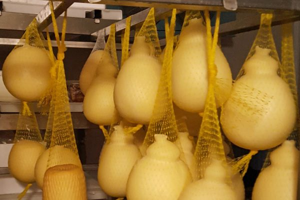 Puglia Experience