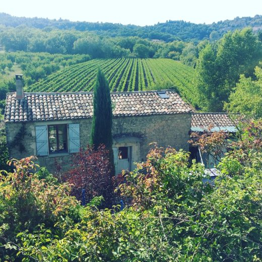 Luberon Walking Week